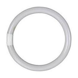 Tubo fluorescente Circular T9 40W