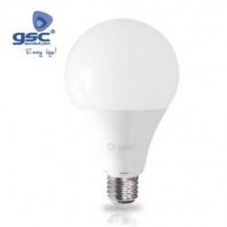 Bombilla LED 19W G95